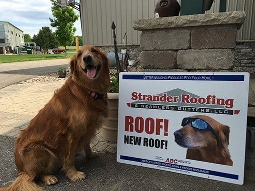 A dogs standing in front of a sign | roofing in Madison