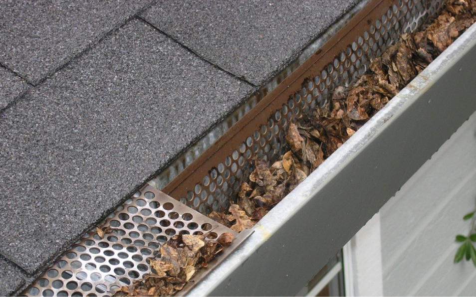 Debris That Commonly Clog the Gutter
